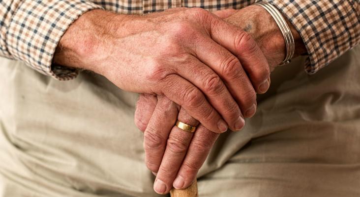 osteoarthritis.ARSH_.Pixabay.NoAttribution.PublicDomain